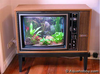Tv_fish_tankjpg